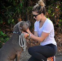 Sophia Bush de leggings com os cães