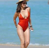 O corpo de Olivia Munn na praia (2017)